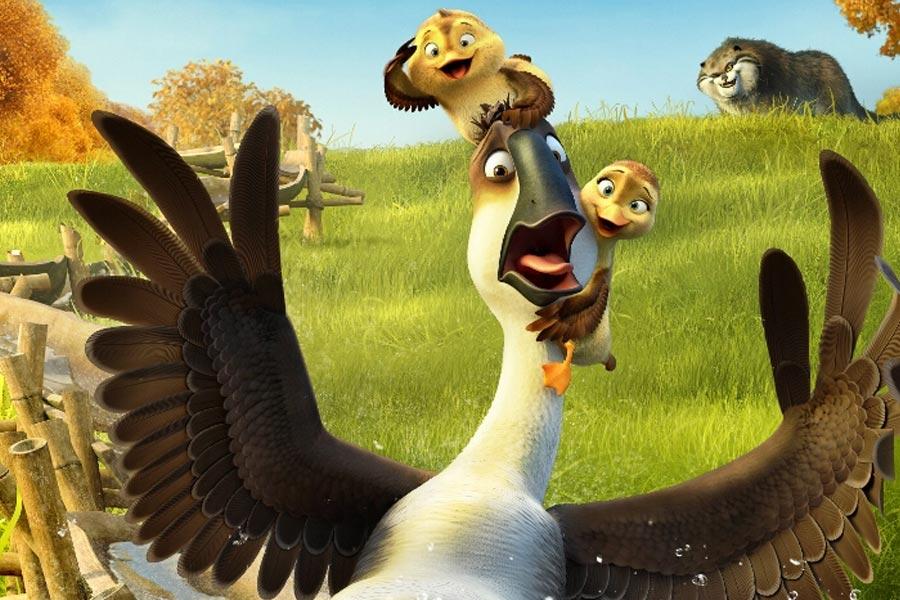 اردک، اردک، غاز